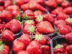 buah-strawberry-ilustrasi-98.jpg