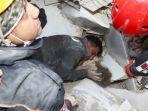 Update Korban Gempa Bumi Turki - Yunani: Total 104 Orang Tewas