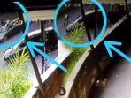 VIRAL Video PNS Kepergok Mesum di Mobil, Diduga Panik Langsung Tancap Gas hingga Tabrak Satpam Mall