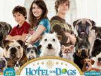 hotel-for-dogs2.jpg