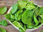 Jarang Diketahui, Ternyata 5 Jenis Makanan Ini Mengandung Kalsium