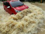 Jangan Paksa Mobil untuk Menerobos Banjir, Tinggi Air Jadi Patokan Kapan Harus Matikan Mesin