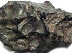 sebuah-pecahan-meteorit-sikhote-alin.jpg