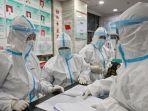 Ilmuwan 'Wanita Kelelawar' Virus Corona China Bersedia Diperiksa WHO, Seperti Apa Investigasinya?