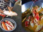 Viral Belasan Ikan Koi Dimasak Gulai oleh Warga, Diduga Mati karena Banjir