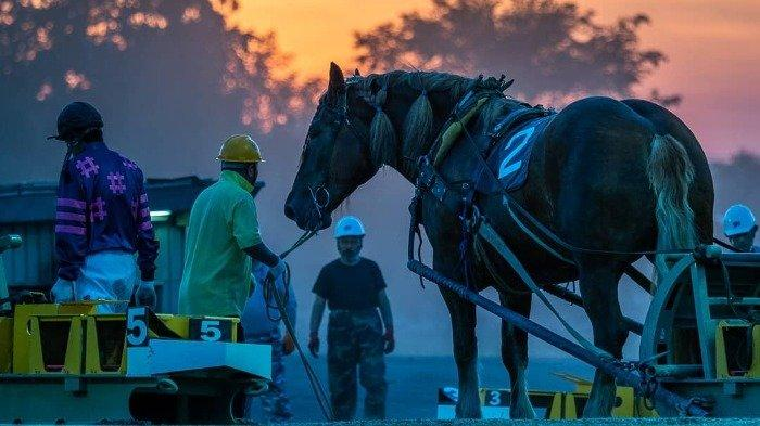 Liburan ke Hokkaido? Jangan Lupa Nonton Balap Kuda Terlambat di Dunia