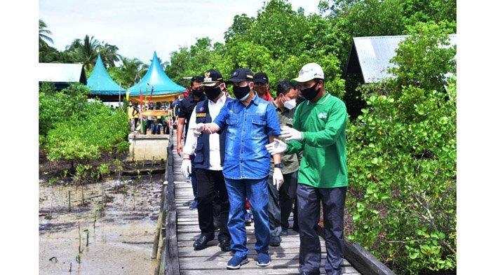 Nelayan Pangkalan Jambi Wujudkan Ekowisata Mangrove, Buah Usaha Mempertahankan Tempat Sandar Kapal