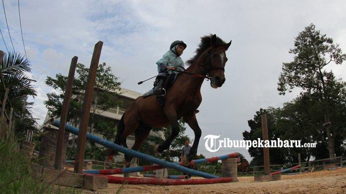 Berkuda di Savana Stable Pekanbaru, Pengunjung Bisa Pilih Paket Riding School Untuk Satu Bulan