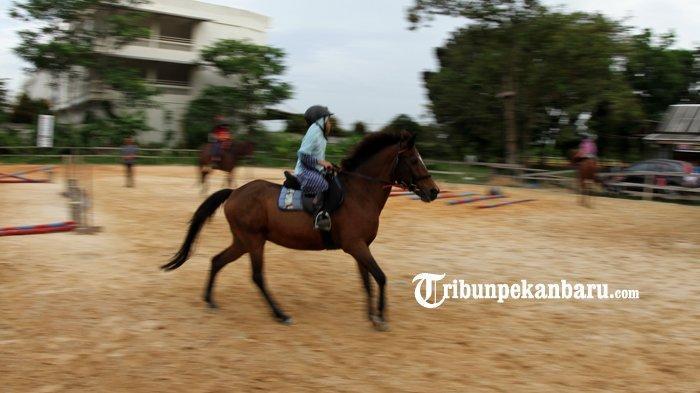 FOTO : Wisata Berkuda di Savana Stable Pekanbaru - kuda4.jpg