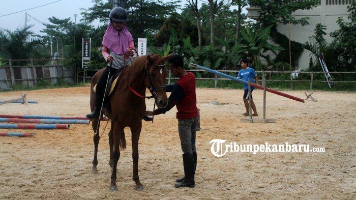 FOTO : Wisata Berkuda di Savana Stable Pekanbaru - kuda5.jpg