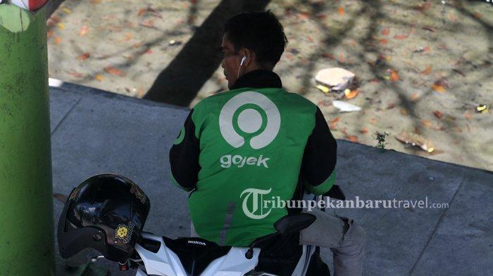 FOTO : Ojek Online Diperkirakan Akan Terkena Dampak PSBB di Pekanbaru - ojek-online3.jpg