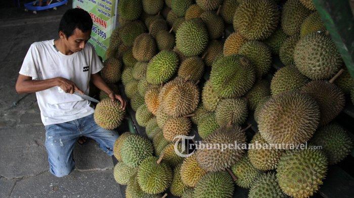 Buka Hingga Dini Hari, Mari Nikmati Musim Durian Sepanjang Tahun di Pondok Durian Ayah Pekanbaru