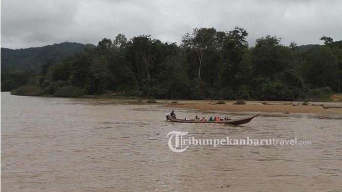 Fasilitas Olahraga Arung Jeram Akan Dibuat di Sungai Subayang Rimbang Baling, Tahun ini Diluncurkan
