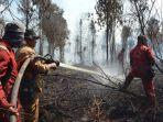kebakaran-hutan-dan-lahan-di-suaka-margasatwa-giam-siak-kecil.jpg