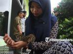 FOTO : BBKSDA Riau Rawat Dua Anak Kucing Hutan yang Ditemukan Warga