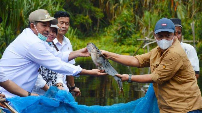 Nelayan Tradisional Panen Ikan di Taman Nasional Zamrud Siak