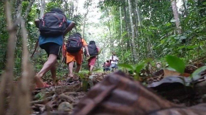 Anak-anak di pedalaman Taman Nasional Bukit Tigapuluh (TNBT) setiap hari harus berjuang melewati medan yang berat, menembus hutan, berjalan di antara pepohonan dan menyebrangi sungai yang deras untuk bisa sampai ke sekolah. (Istimewa)
