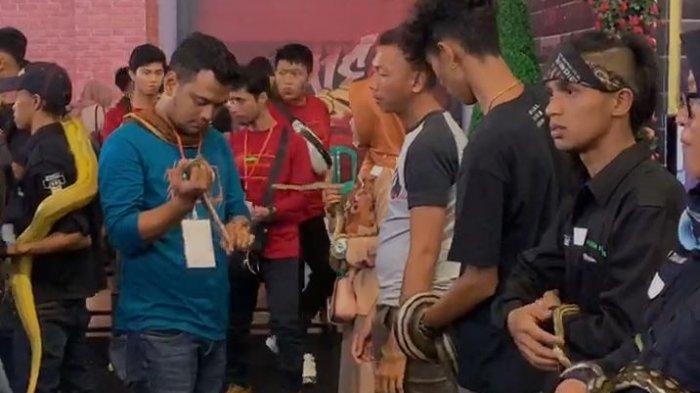 Reptile Party Pekanbaru 2020 Expo & Reptile Contest