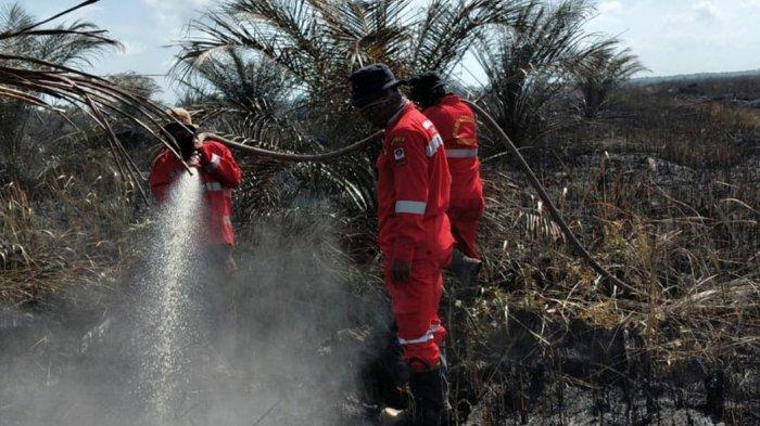 Riau Segera Tetapkan Status Siaga Darurat Karhutla 2021