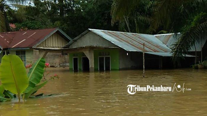Sejumlah rumah warga Desa Lubuk Kembang Bunga Kecamatan Ukui Kabupaten Pelalawan, Riau terendam banjir akibat hujan deras yang mengguyur wilayah tersebut
