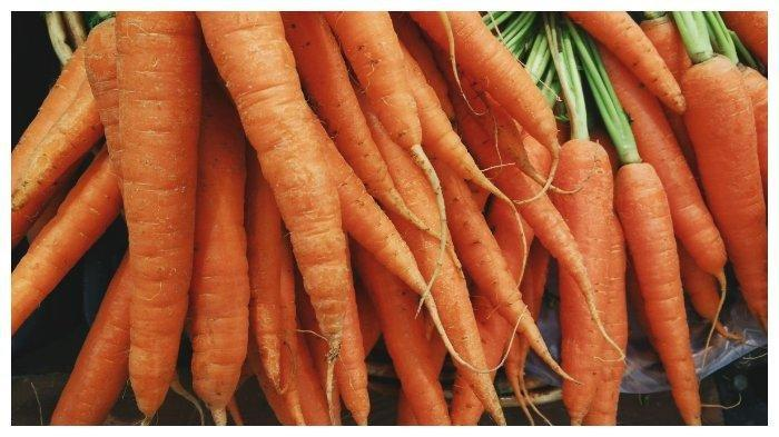 ilustrasi wortel