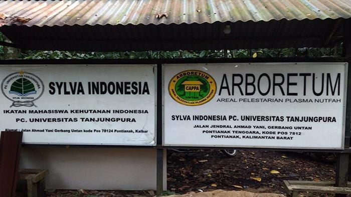 Arboretum Sylva, Hutan Kalimantan di Tengah Bisingnya Perkotaan untuk Nikmati Udara Segar