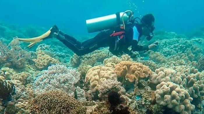 Minat Liburan Saat Pandemi Cukup Besar, Wisata Laut Jadi Incaran Wisatawan
