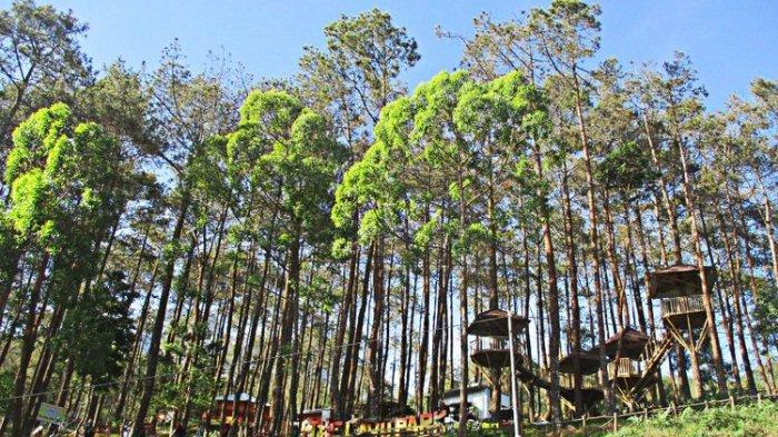 Lawu Park Tawangmangu Buka Kembali Saat New Normal, Jumlah Pengunjung Masih Dibatasi