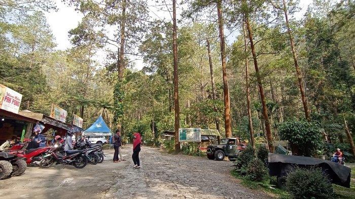 Menikmati Suasana Alam Pegunungan dengan Camping di Bumi Perkemahan Sekipan Karanganyar (VIDEO)
