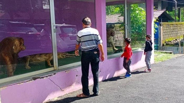 Perbolehkan Anak Usia Diatas 5 Tahun Masuk TSTJ, Jumlah Wisatawan yang Datang Langsung Meningkat