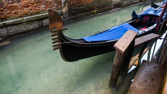 Italia Lockdown, Perairan Venesia Kini Kembali Jernih hingga Dipenuhi Ikan