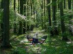 empat-makan-di-tengah-hutan-nowhere-swedia.jpg