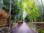 tempat-wisata-arashiyama-di-jepang-saat-corona-yeee.jpg