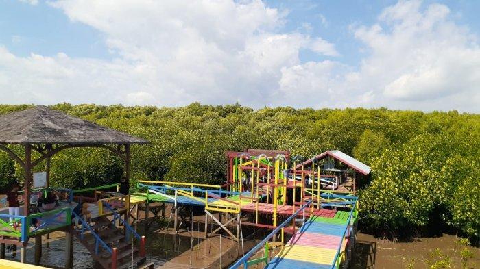 Lantebung Destinasi Wisata Mangrove Tak Jauh dari Pusat Kota Makassar