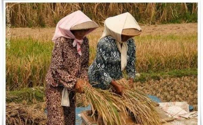 Perempuan di Indonesia Dorong Pertumbuhan Ekonomi