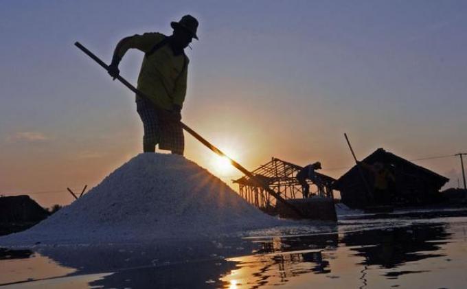 Harga Garam Anjlok, AIPGI : Dipicu Rendahnya Konsumsi Masyarakat