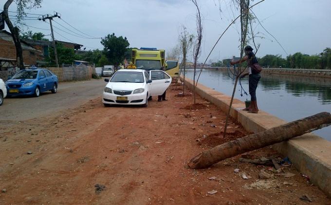 Normalisasi Kali Angke, 163 Pohon Ditebang di Jalan Panjang