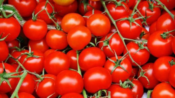 Tomat Tingkatkan Gairah di Ranjang Jika Dikonsumsi Begini