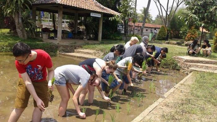 Kampung Wisata Cinangneng Pelopor Wisata Edukasi Desa di Bogor