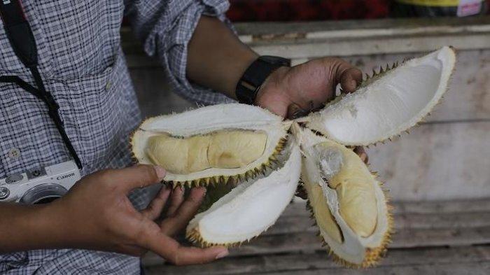 Ini Pesan Ahli Gizi Cara Konsumsi Durian, Silakan Dicoba Bedanya