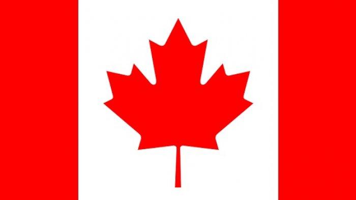Bos Huawei Ditahan, Kini Giliran Mantan Diplomat Kanada Dikabarkan Ditahan di China