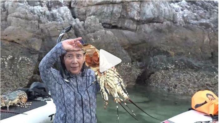 Susi Pudjiastuti: Biarkan Tuhan Budi Dayakan Lobster di Laut, Manusia Ambil Saat Sudah Besar