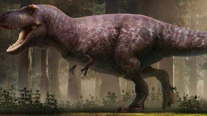 Begini Wujud T-rex yang Sebenarnya, Gembul dan Tak Berbulu