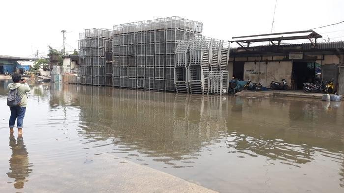 Banjir Rob di Muara Baru Bikin Warga Kesulitan