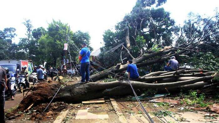 BERITA FOTO: Penampakan Terkini Warga Perbaiki Rumah Pasca Angin Puting Beliung Bogor