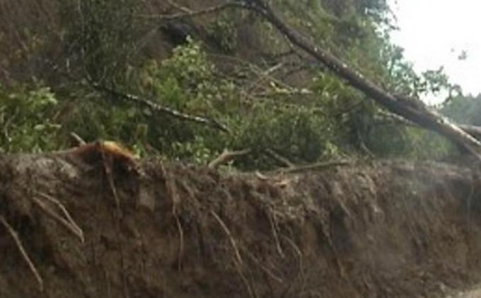 Bencana Longsor, 3 WNI Meninggal Akibat Tanah Longsor di Penang