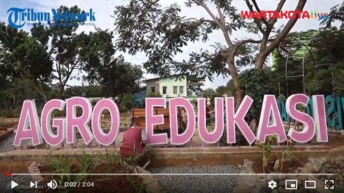 VIDEO Agro Edukasi Wisata Ragunan Segera Dibuka untuk Warga Jakarta