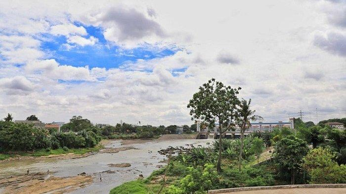 Agrowisata Baru Kini Hadir di Kota Tangerang, Tampilkan Tanaman Hias dan Produktif