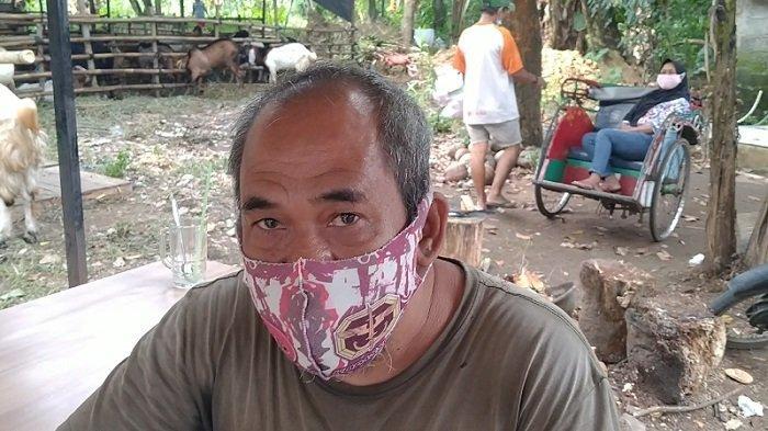 10 Tahun Jualan Kelapa, Baru Kali Ini Agus Menikmati Rezeki dari Larisnya Kelapa Hijau