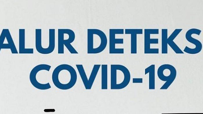 Kata Kemenkes Soal Alur Deteksi Virus Corona, Mulai dari Pemantauan, Pengawasan dan Positif Covid-19